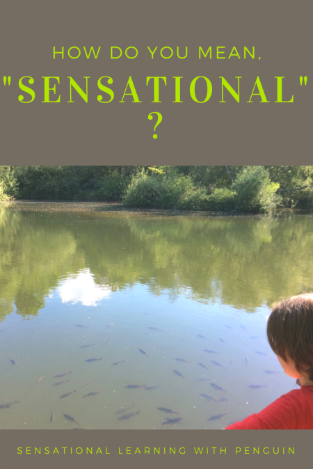 """'Sensational', in its literal meaning, means something which triggers our senses, causing us heightened sensations. Our blog and our ways of learning is very often about multisensory activities, and about sensory processing. I explain further in this post: 'How do you mean, """"sensational""""?' - Sensational Learning with Penguin"""