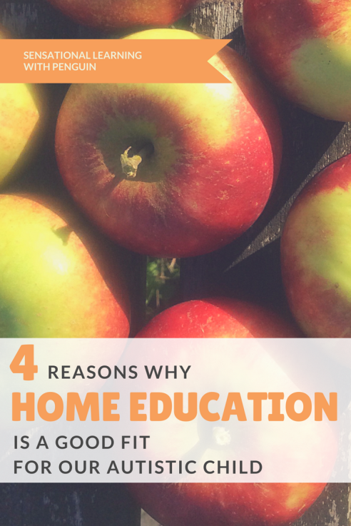 4 Reasons Why Home Education (Homeschooling) is a Good Fit for our Autistic Child. Sensory Processing, Special Educational Needs, Learning, Autism Awareness and Acceptance, Sleep issues, Stress Reduction, Social Interactions. Respect, Passion, Motivation.