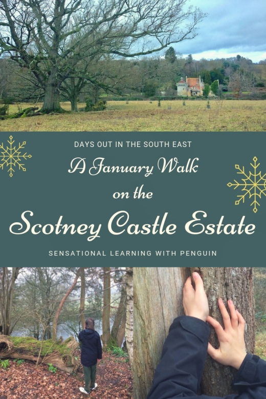 We went exploring on the estate around Scotney Castle in East Sussex. Even on a wet January day, it had plenty to offer, with Sussex Cattle and sheep grazing, woodland and parkland to explore, meaning many opportunities for hands-on and #multisensory #learning in the great #outdoors. Or just to relax and enjoy! #familydaysout