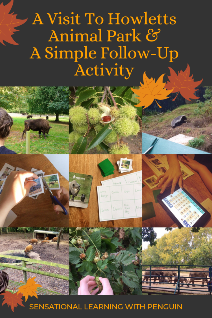 A Visit To Howletts Animal Park & A Simple Follow-Up Activity! #DaysOut #ExploringNature #LearningActivities #AAC #Homeschooling #SpecialNeeds sensationallearningwithpenguin.com