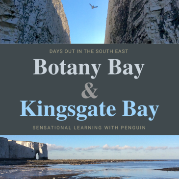 Visiting Botany Bay and Kingsgate Bay in Kent, UK. A lovely winter day out! sensationallearningwithpenguin.com #DaysOut #SouthEast #ExploringNature
