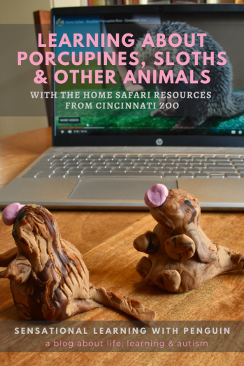 #Learning about porcupines, sloths & other #animals, with the #ZooHomeSafari from #Cincinnati Zoo #homelearning #learningdifferences #homeschooling