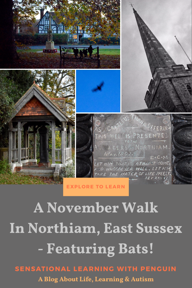 A November Walk In Northiam, East Sussex, Featuring Bats! #Sussex #Autumn #Bats #ExploringNature #FamilyWalks sensationallearningwithpenguin.com